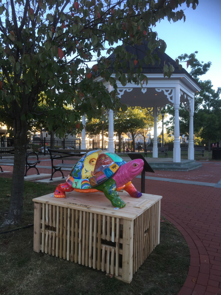 Artea the Turtle on Pawling Village Green